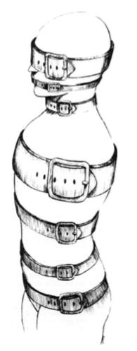 Imagen 1 - Cinturones